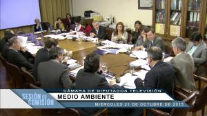 Sesión Comisión Medio Ambiente.